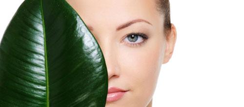 produits de beauté cosmétiques vegan et cruelty free